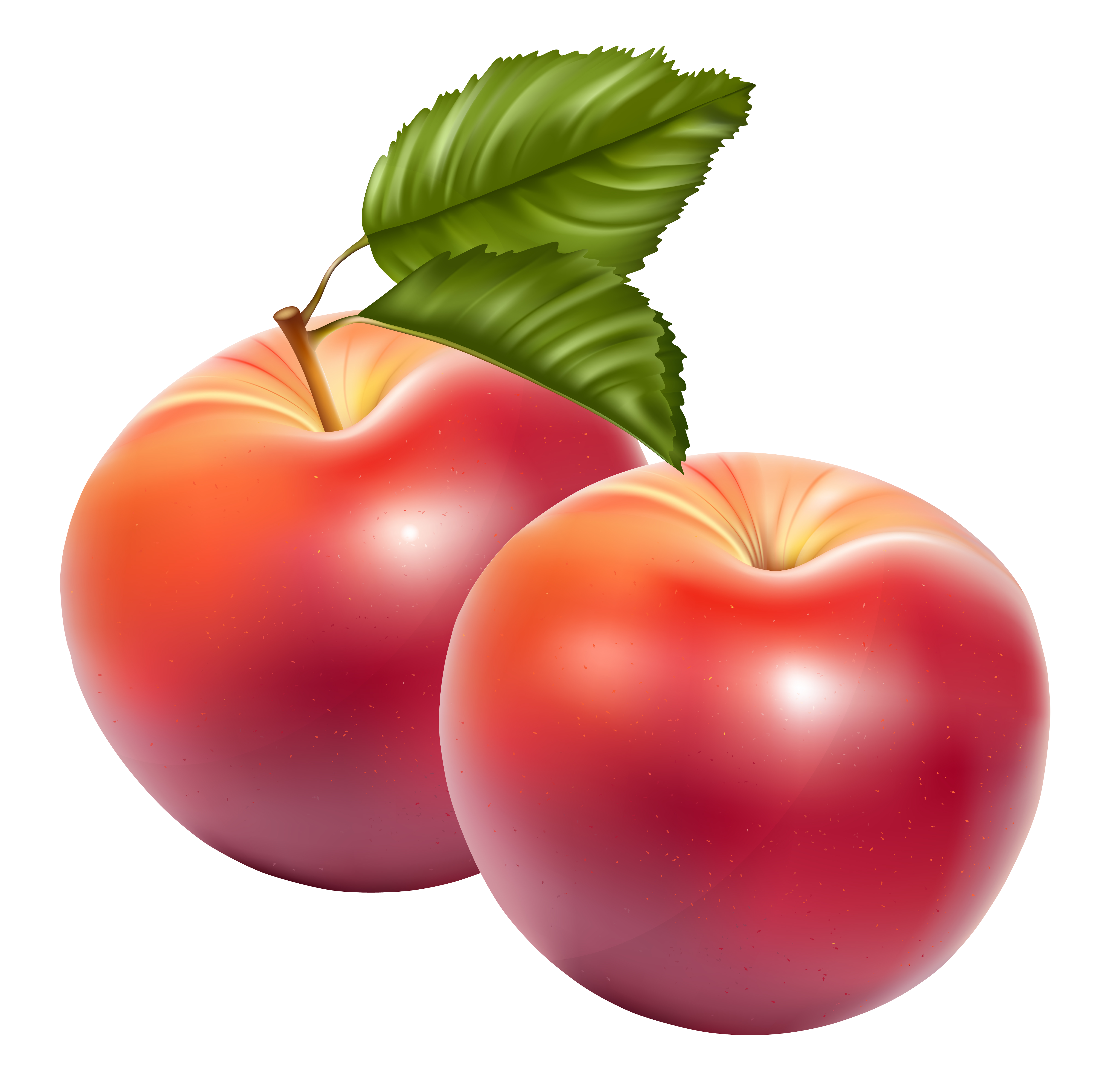 Apple Fruit Png Image PNG Image