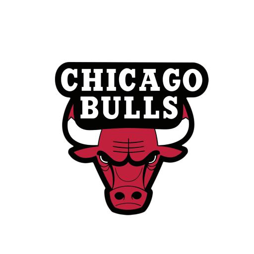 Download chicago bulls transparent image hq png image freepngimg chicago bulls transparent image png image free download png voltagebd Choice Image
