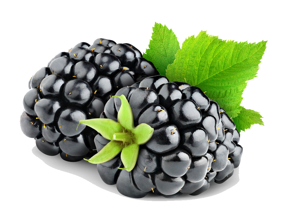 Blackberry Fruit Png Hd PNG Image