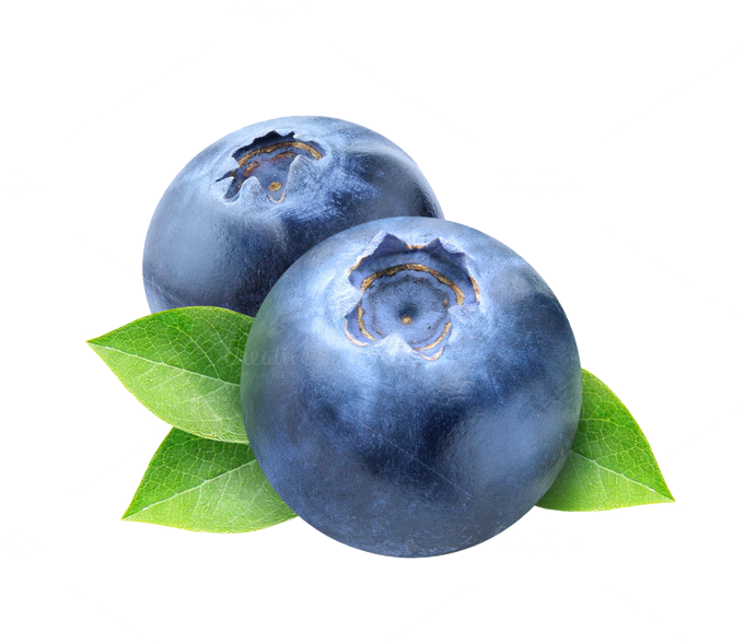 Download Blueberry Photos HQ PNG Image | FreePNGImg
