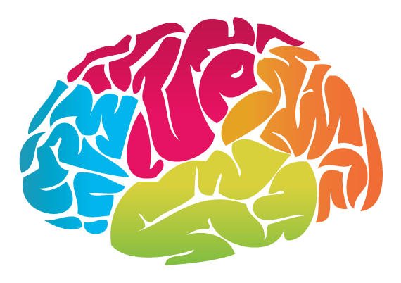 Brain Picture PNG Image