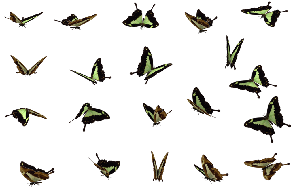 Download free butterflies swarm file icon favicon freepngimg butterflies swarm file png image publicscrutiny Images