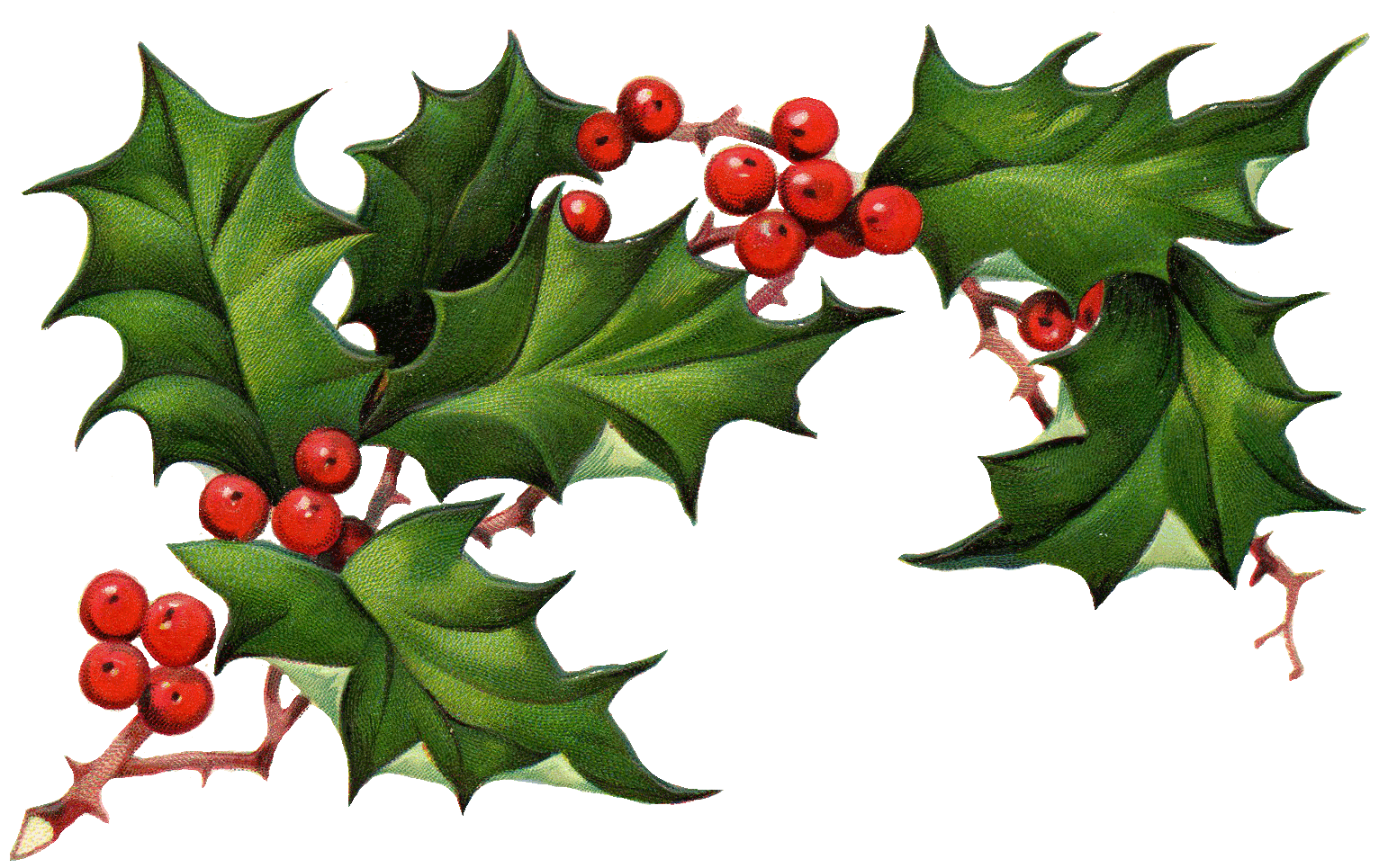 Christmas Elements PNG Image