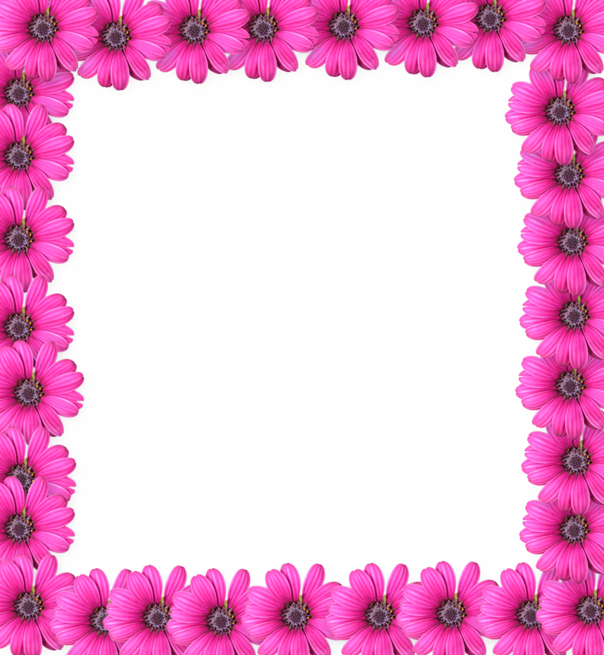 Download Pink Flower Frame Photo HQ PNG Image