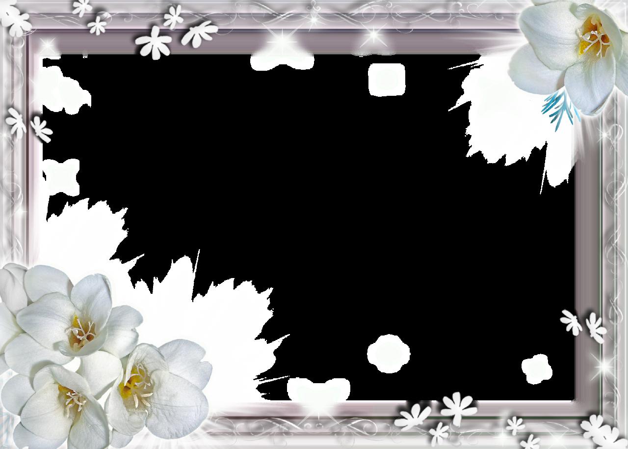 Beautiful White Flowers Birmingham Gallery Wedding And Flowers
