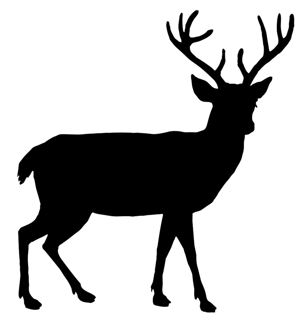 download deer png hq png image freepngimg cheetah clipart black and white inverted cheetah clipart free