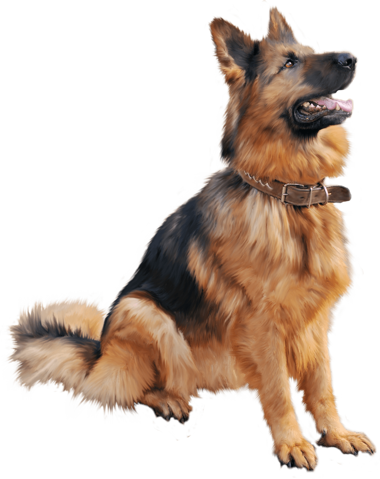 Download Dog Png Image Picture Download Dogs HQ PNG Image ...
