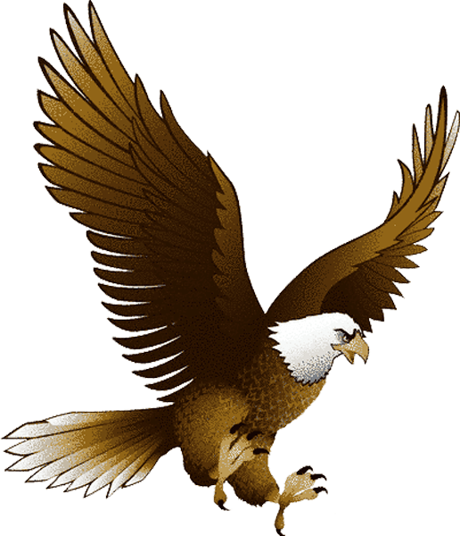 Download Eagle Png Image With Transparency Download HQ PNG Image ...