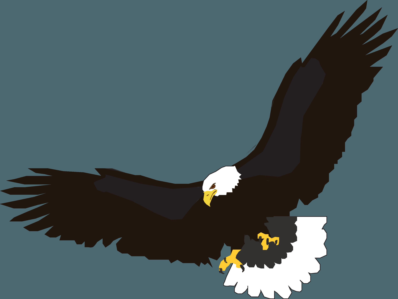 Download Flying Eagle Png Image Download HQ PNG Image | FreePNGImg