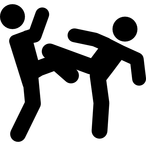 Fight Photos PNG Image