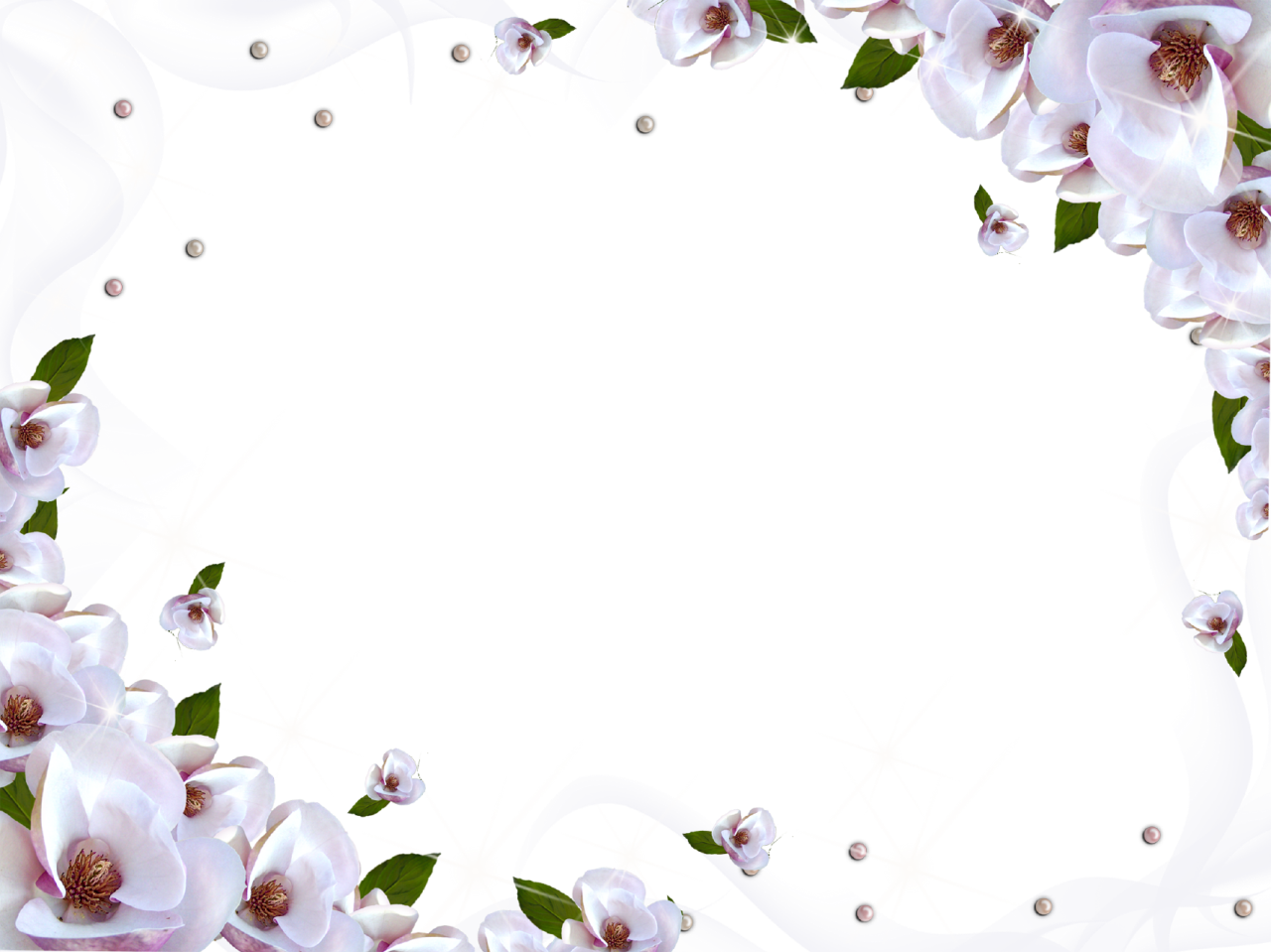 White Flower Frame Wallpaper Download Free Image PNG Image