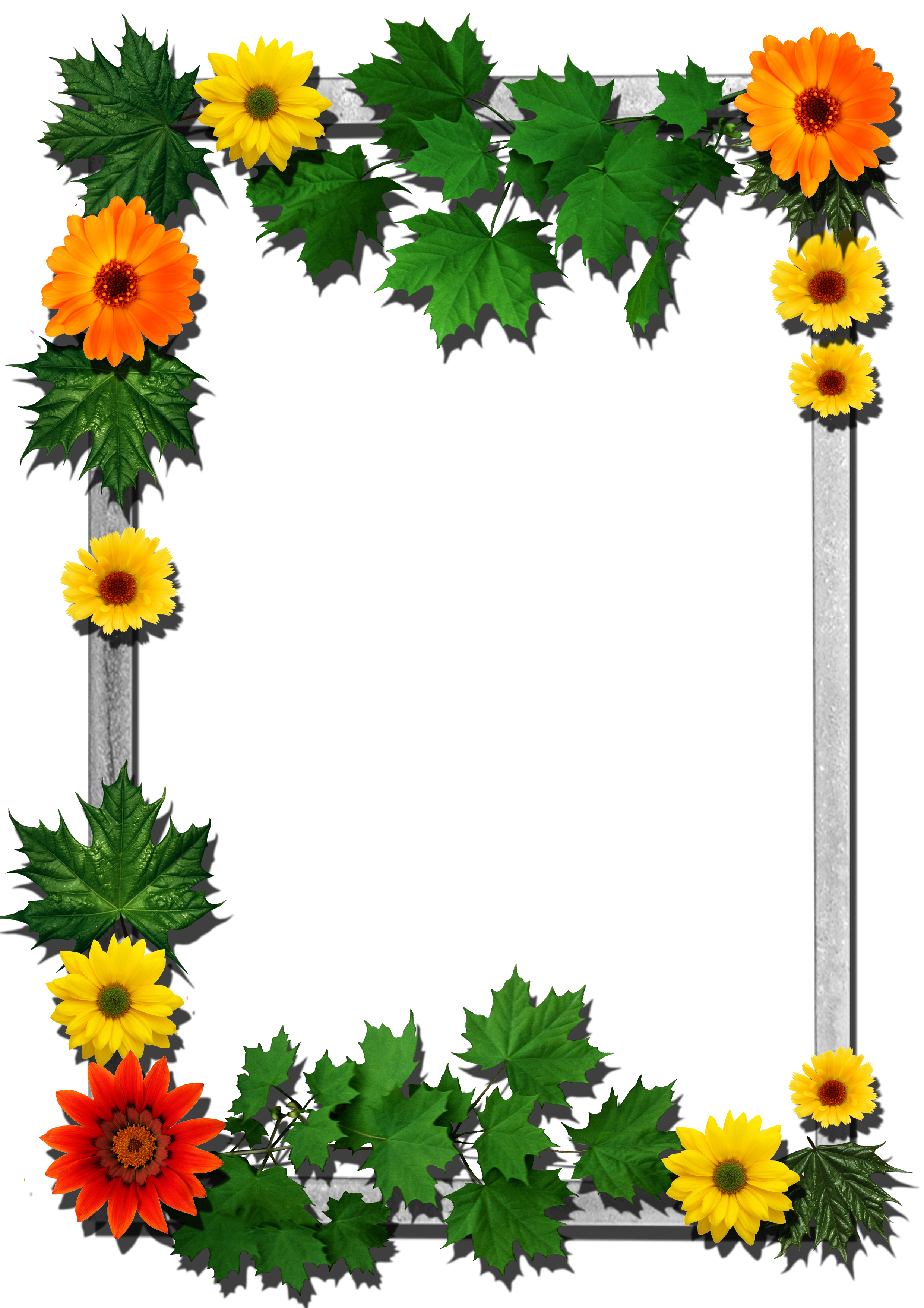 Frames Picture Frame Flower Free PNG HQ PNG Image