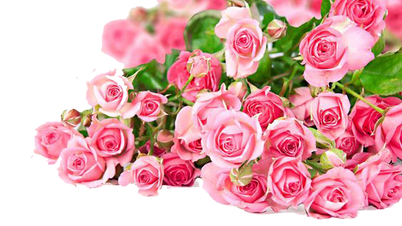 Download flowers free png photo images and clipart freepngimg pink roses flowers bouquet photos png image mightylinksfo Image collections
