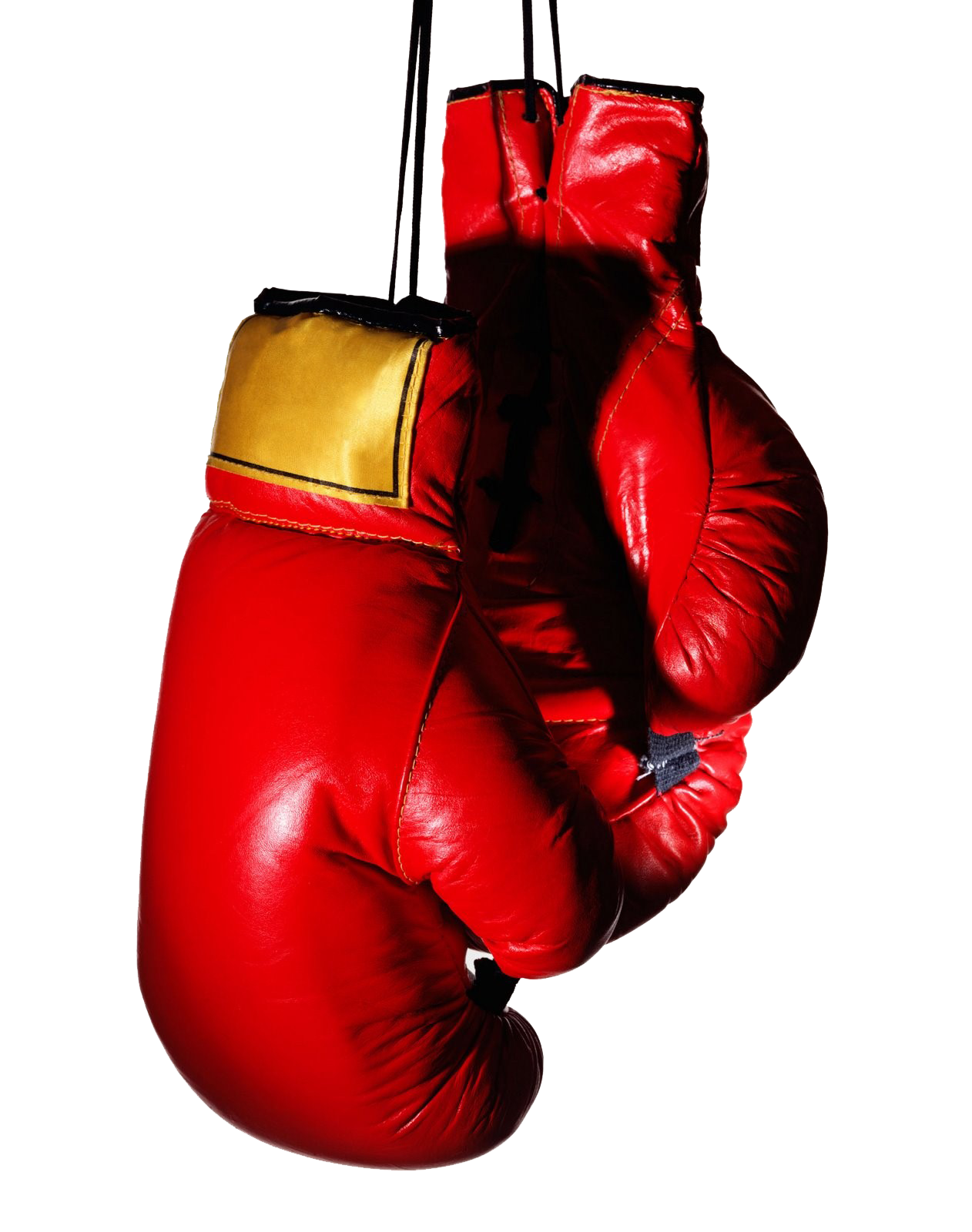 download boxing gloves transparent image hq png image freepngimg Red Fox Graphics red fox clip art outline vector