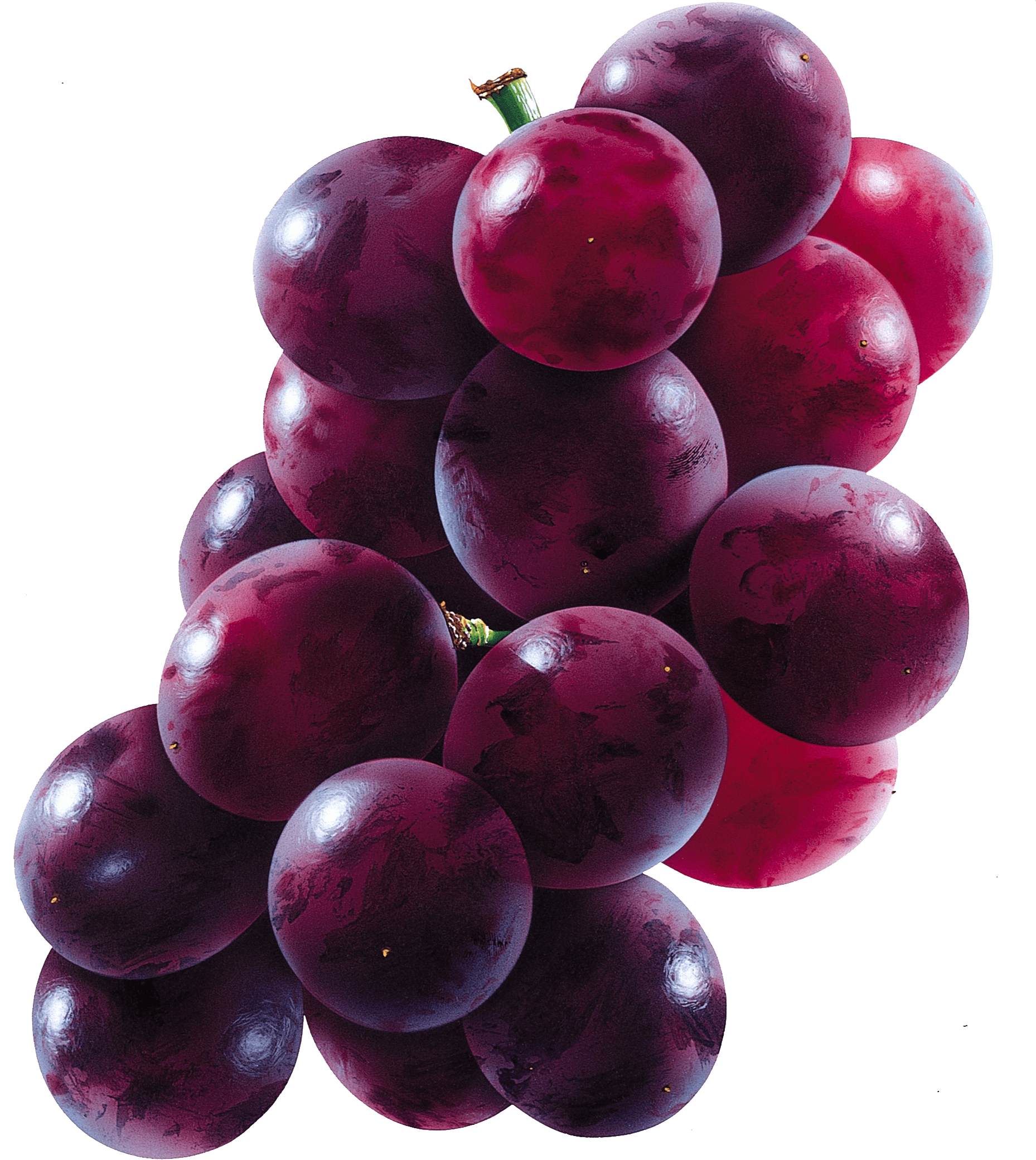 Download Grape Free PNG photo images and clipart | FreePNGImg for Grapes Animated  303mzq