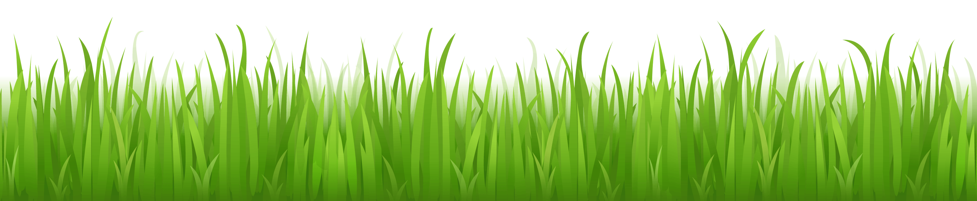 Grass Picture Hq | Collection 9+ Wallpapers