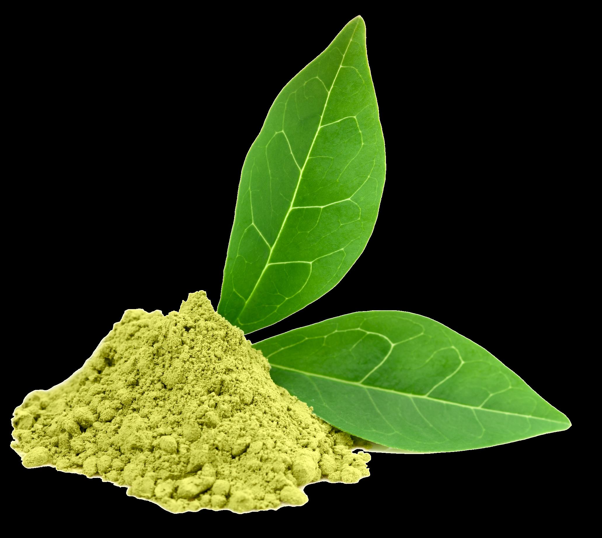 Download Free Green Tea Photos Icon Favicon Freepngimg