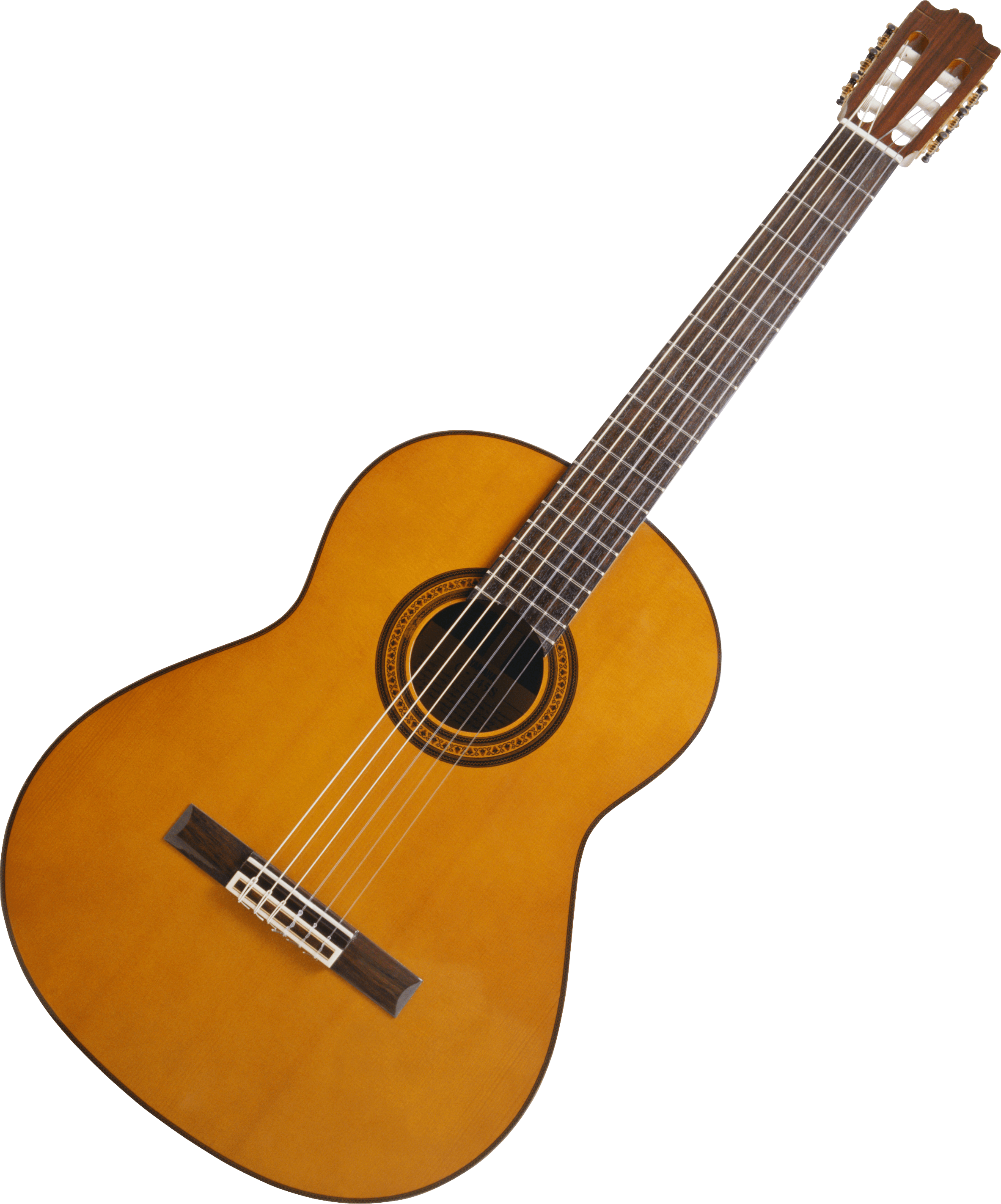 download guitar png image hq png image freepngimg beaver clipart but for free beaver clipart black and white