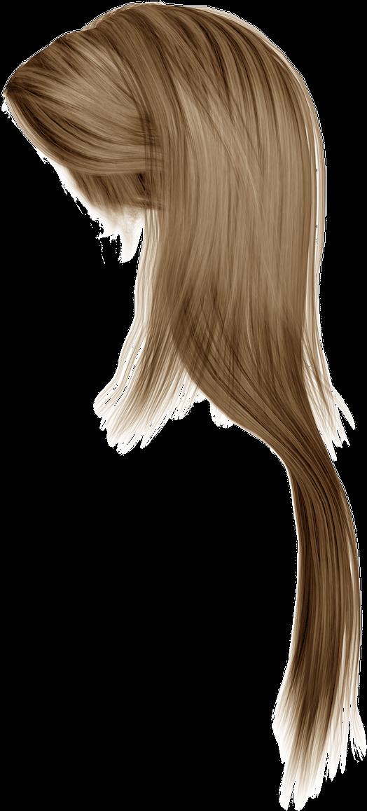 Download Women Hair Png Image Hq Png Image Freepngimg