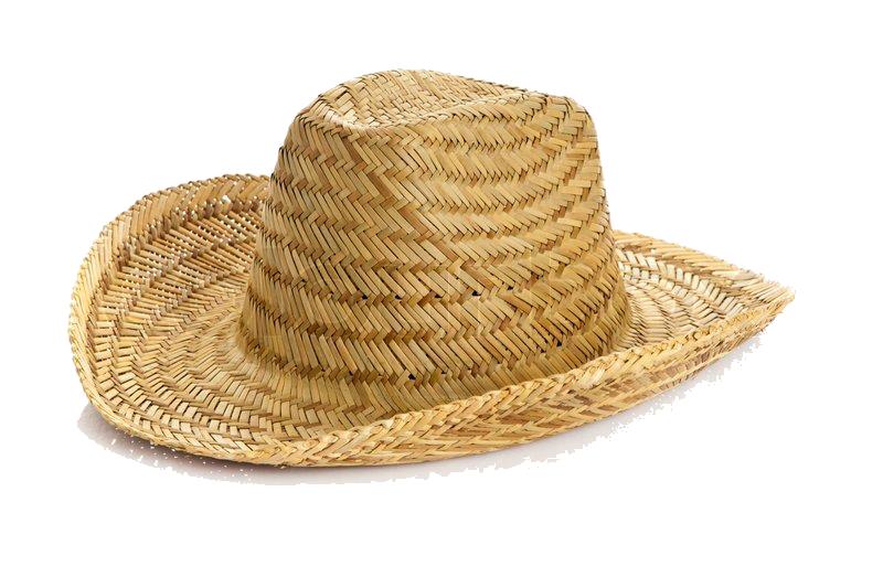 Straw Hat Cat Dog