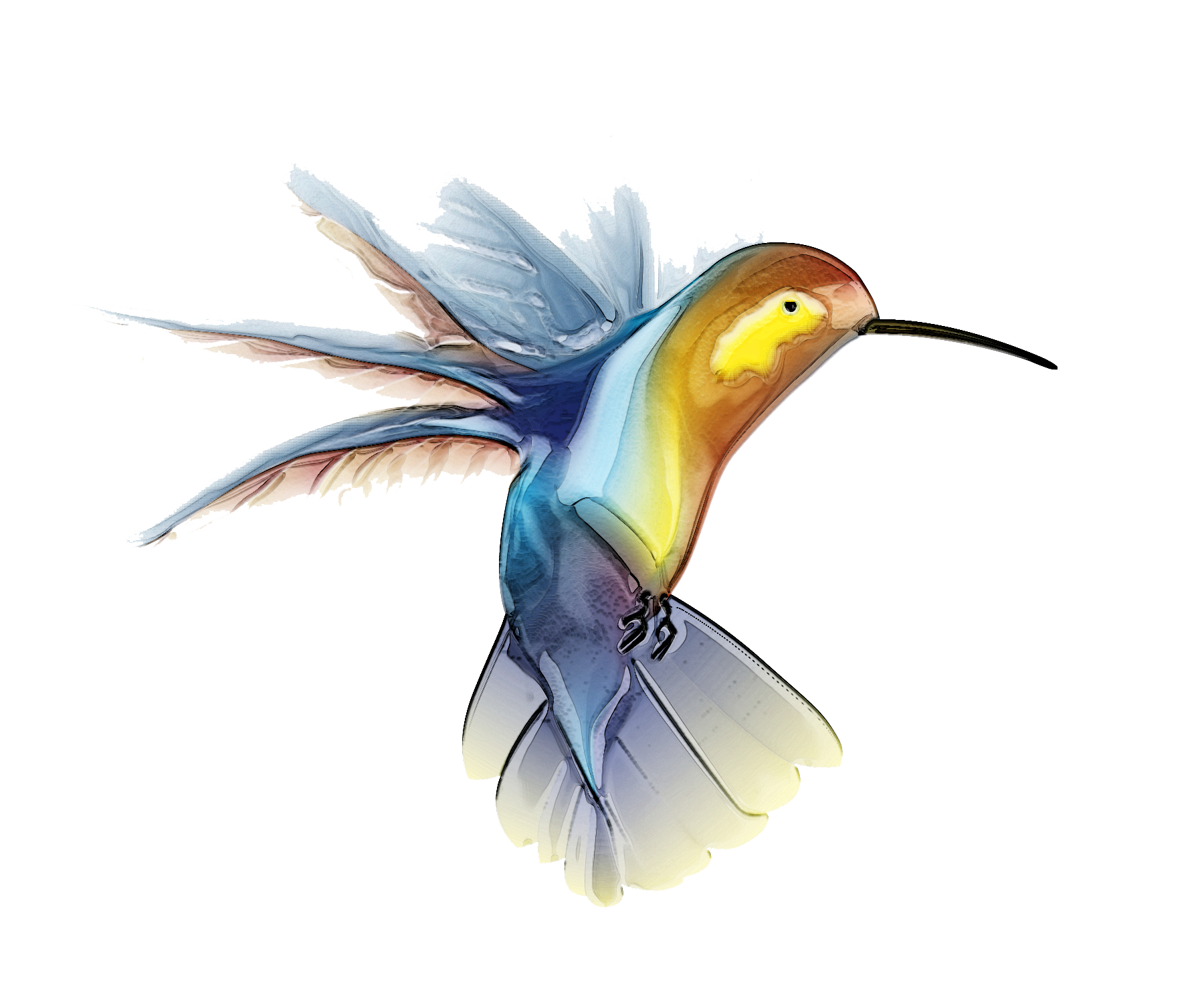 Hummingbird Tattoos Picture PNG Image