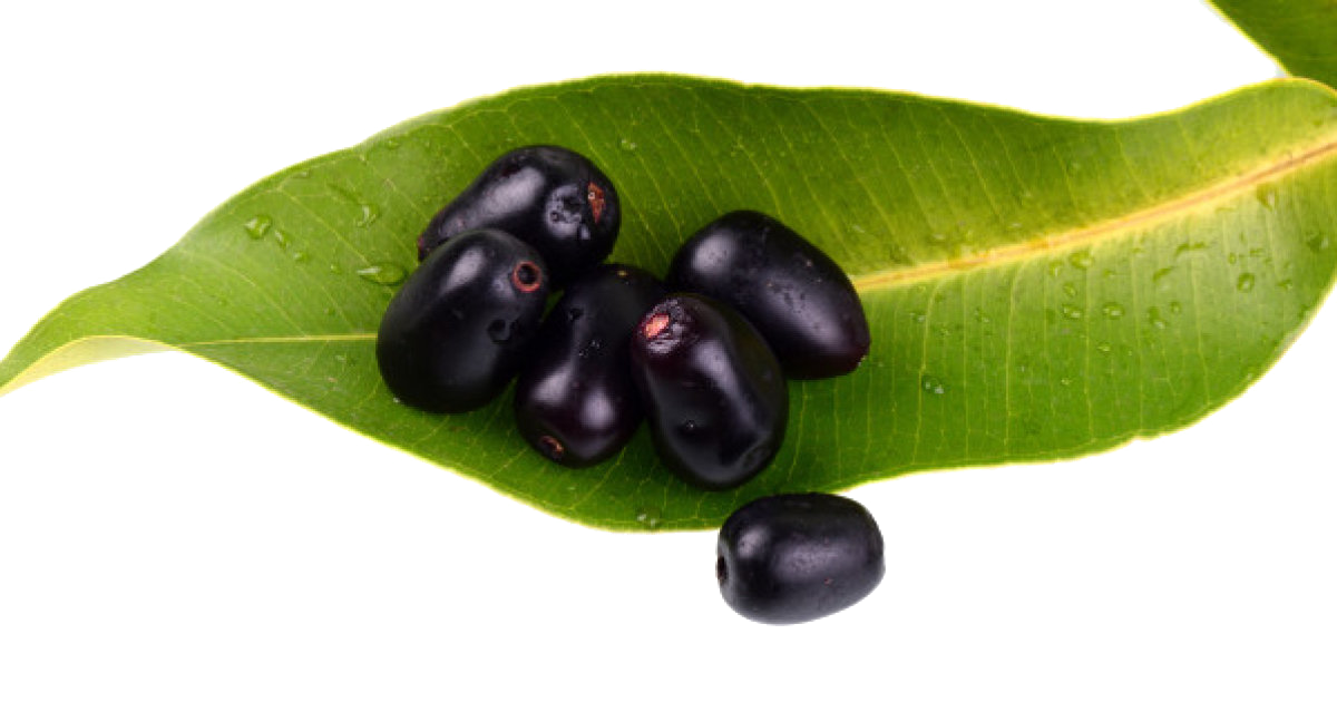 Jamun Java Plum Transparent Background PNG Image