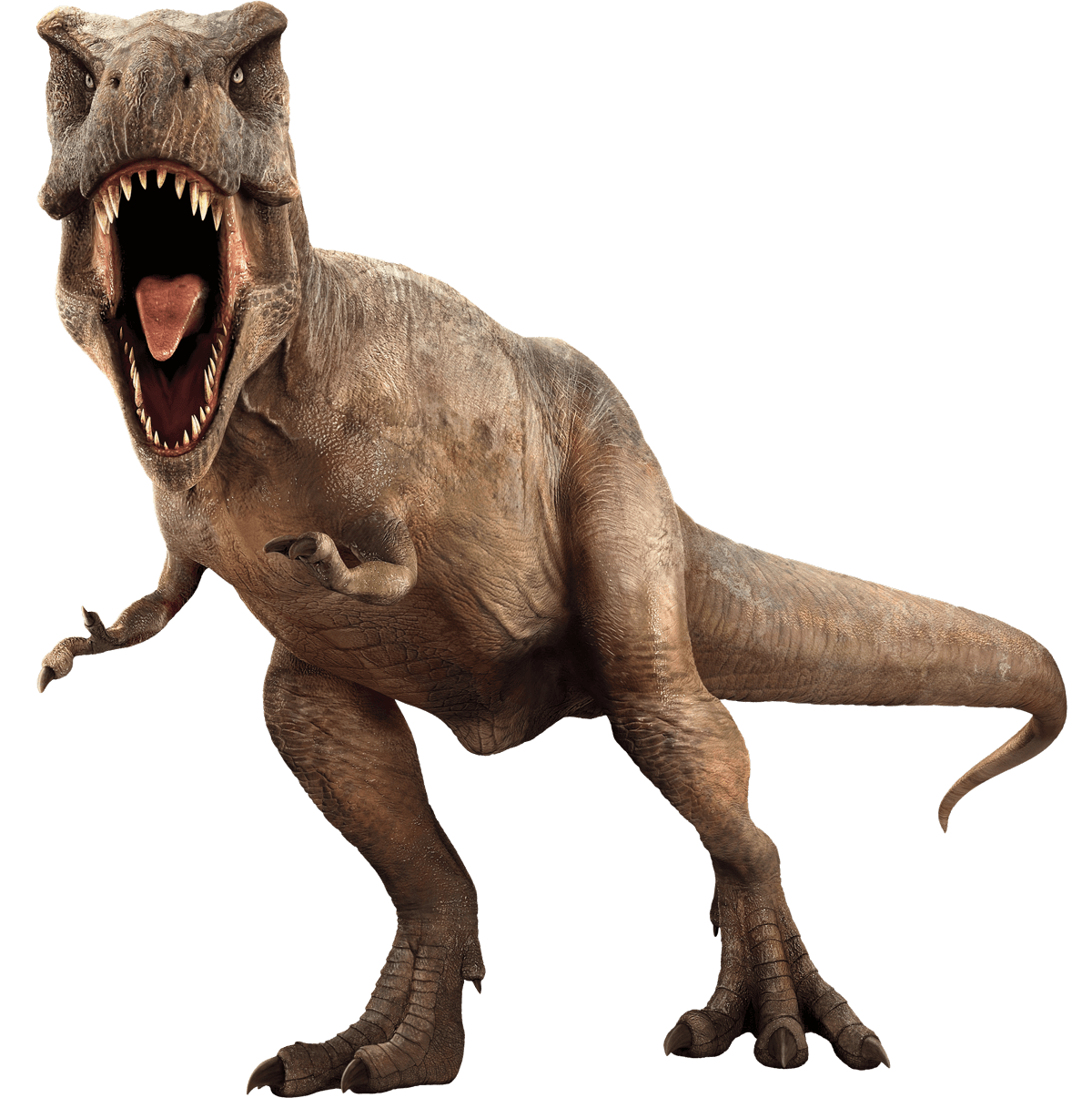 Jurassic Park Picture PNG Image
