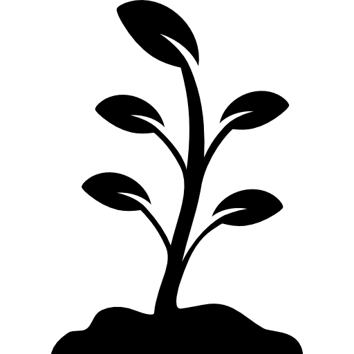 Growing Plant Free Download Image PNG Image
