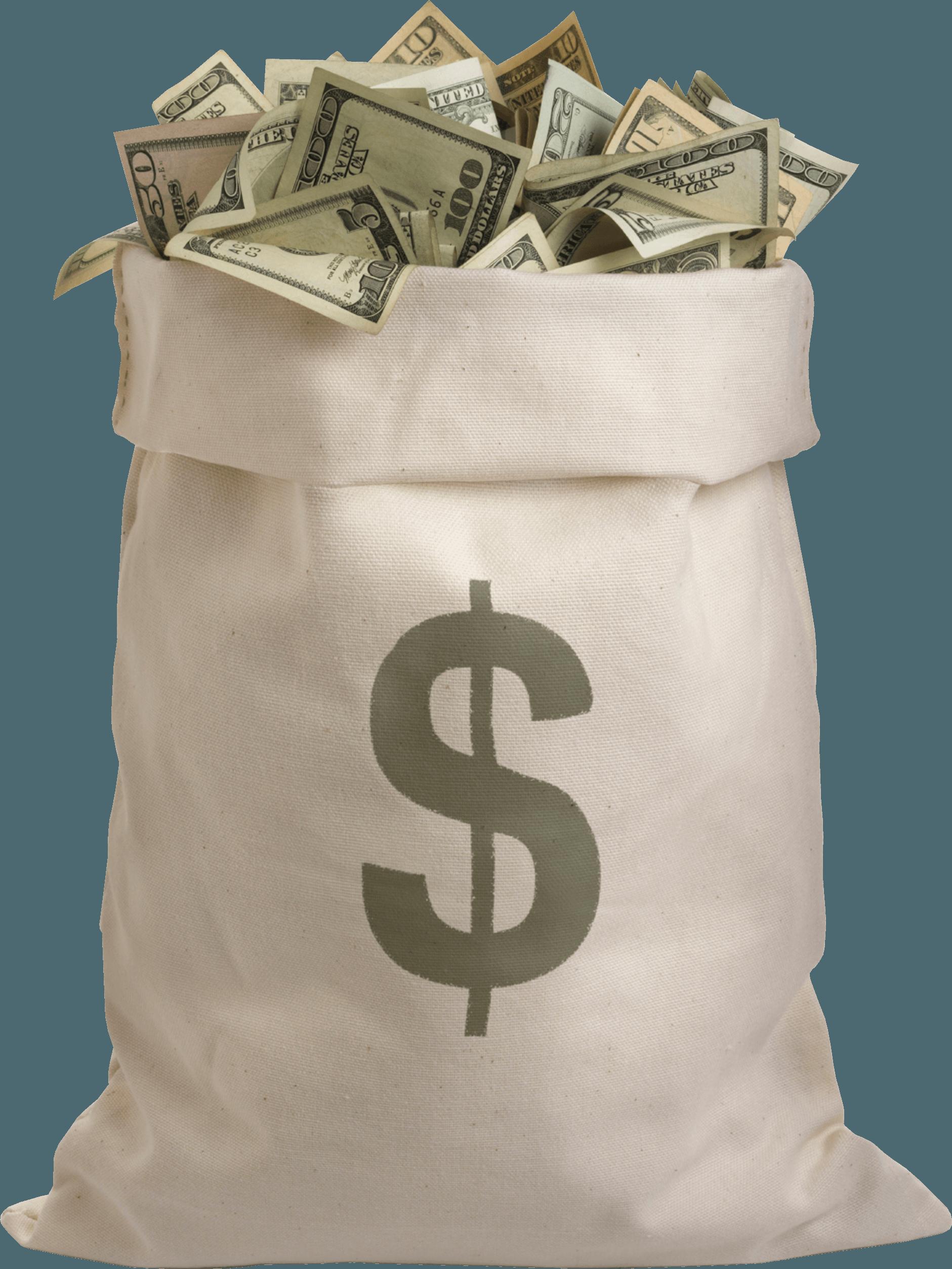 Download Money Bag Png Image HQ PNG Image   FreePNGImg