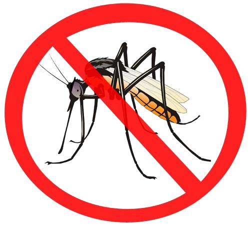 download mosquito png hq png image freepngimg bulldog images clip art cheerleaders bulldog images clip art cheerleaders