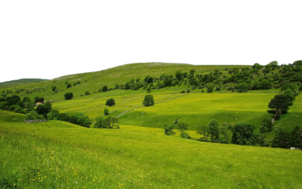 Nature Free Download Png PNG Image