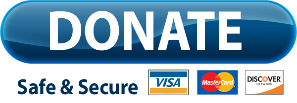 Paypal Donate Button Free Download Png PNG Image