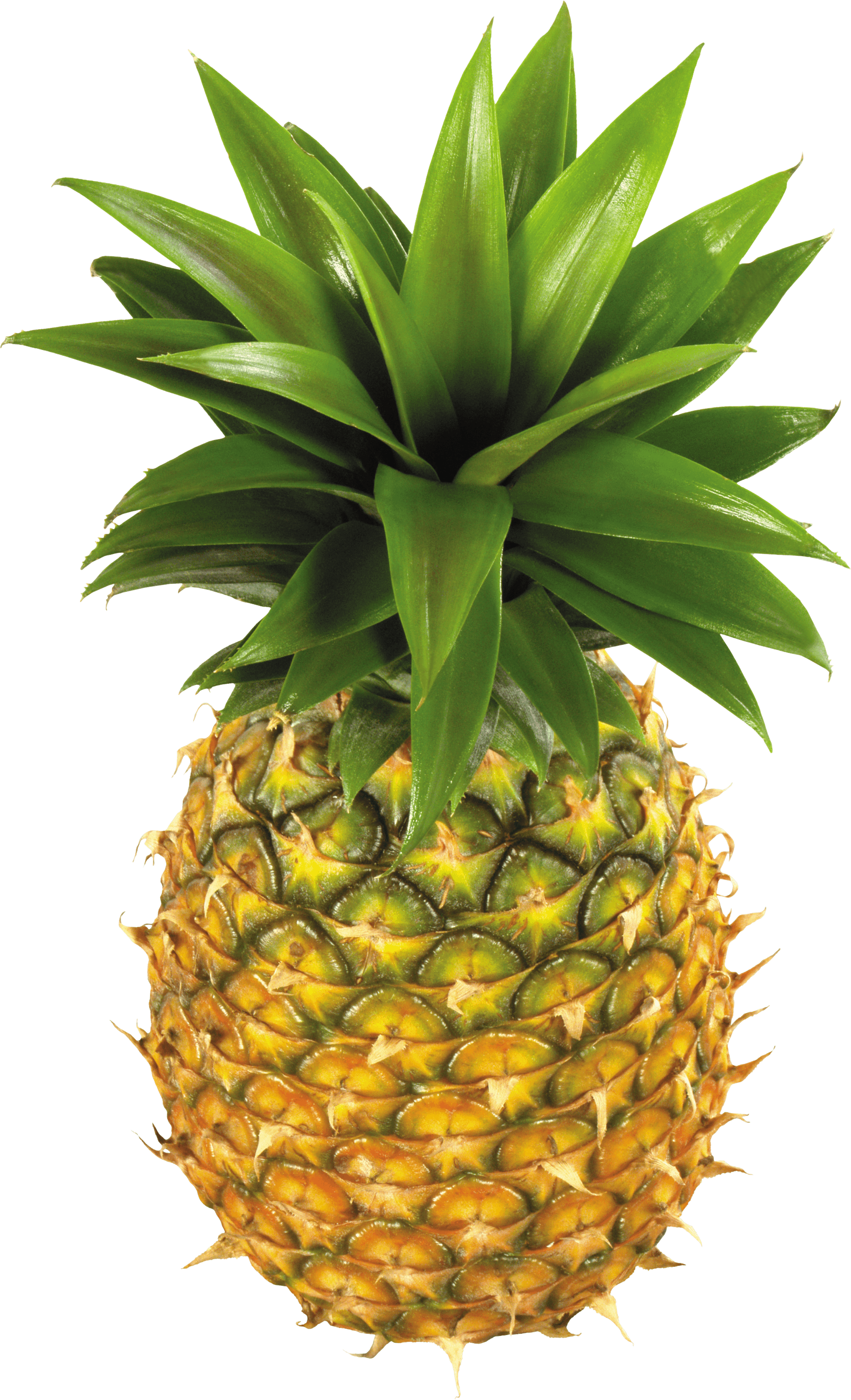 Pineapple Fruit Png Image PNG Image