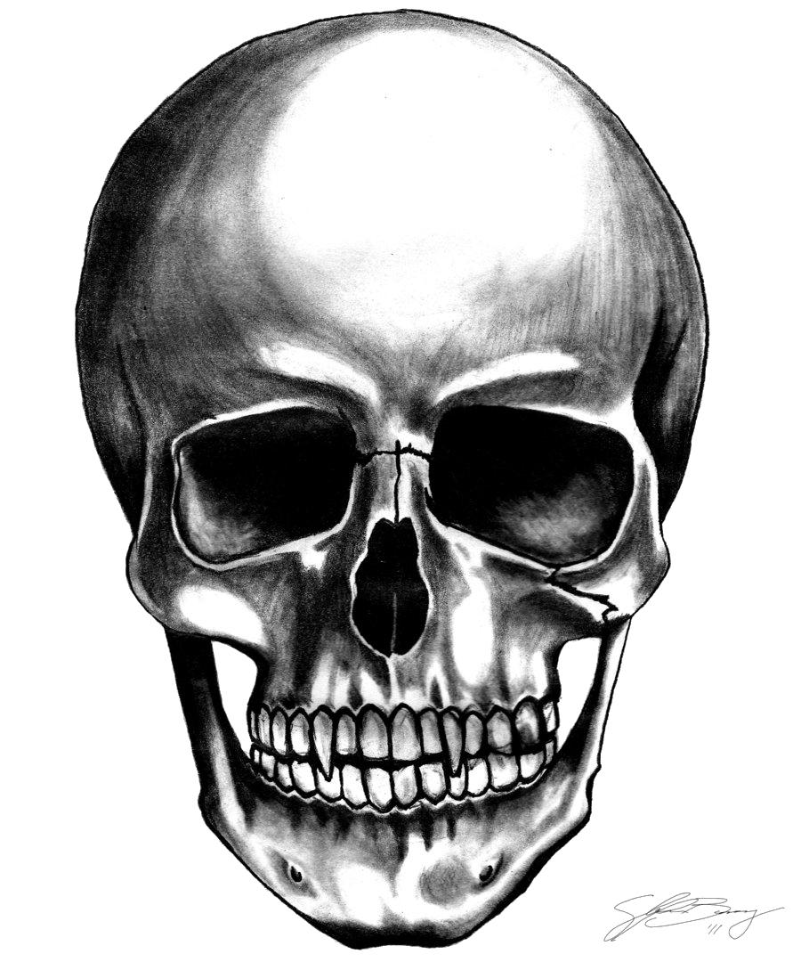 Skull Dog Name Tags