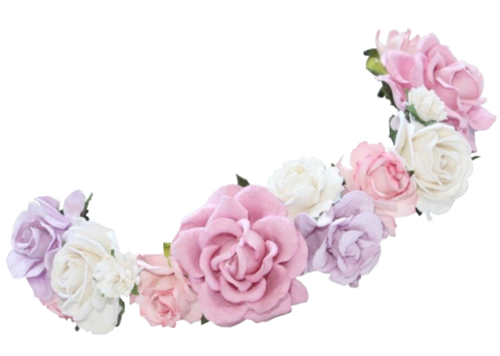 Snapchat Flower Crown Photos PNG Image