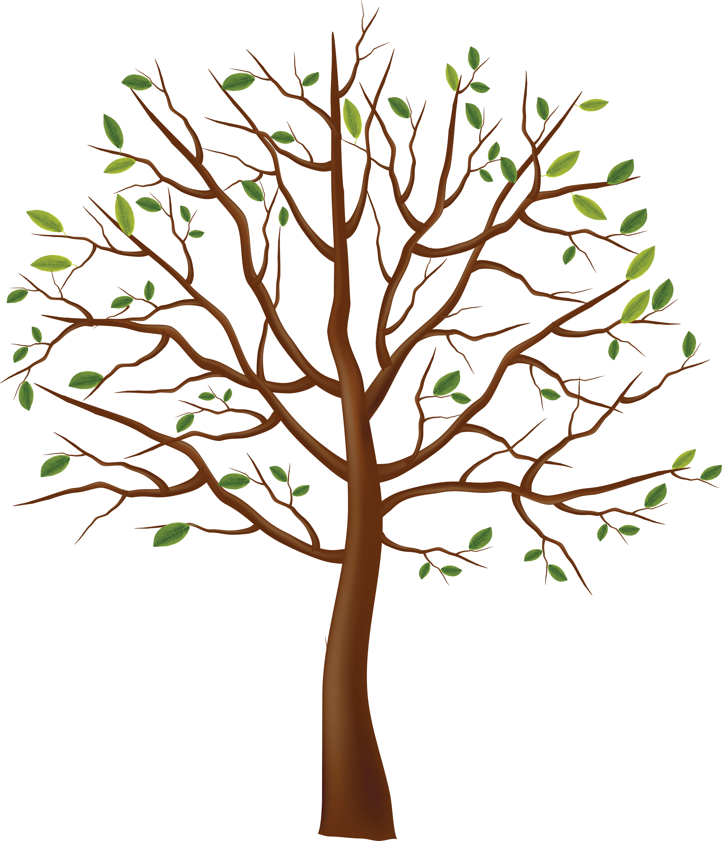 download tree png image hq png image freepngimg chameleon clip art png chameleon clip art free