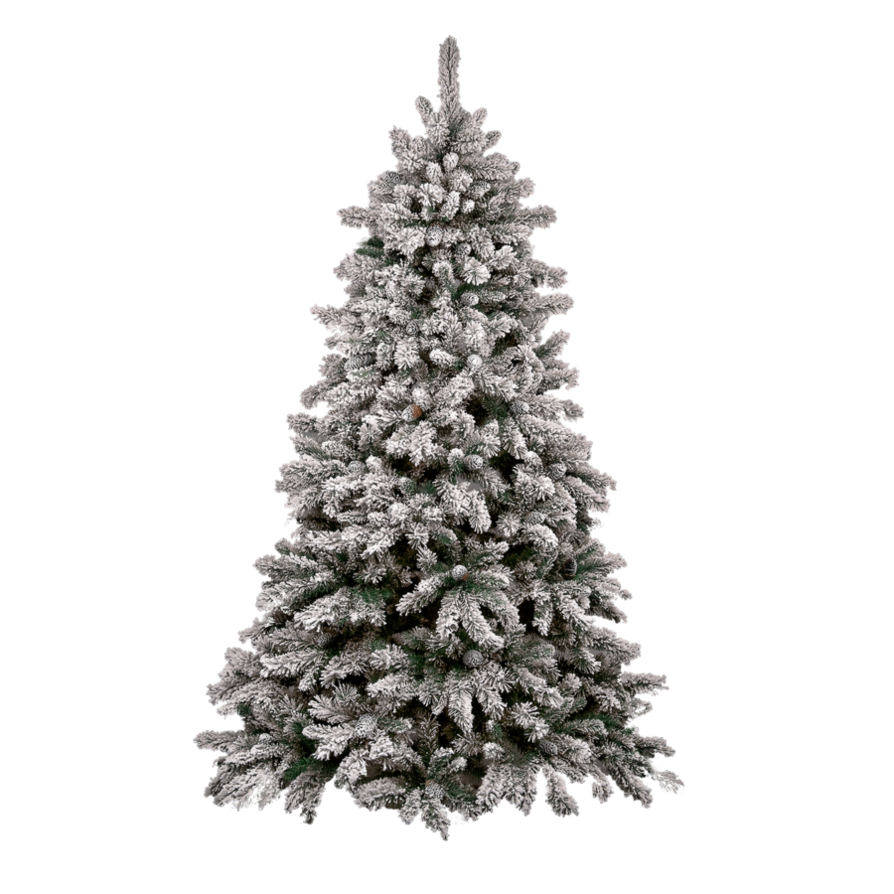 Christmas Tree Photos PNG Image