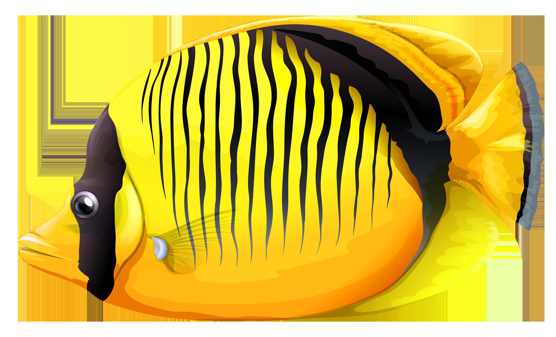 Fish Png 14 PNG Image Free Download