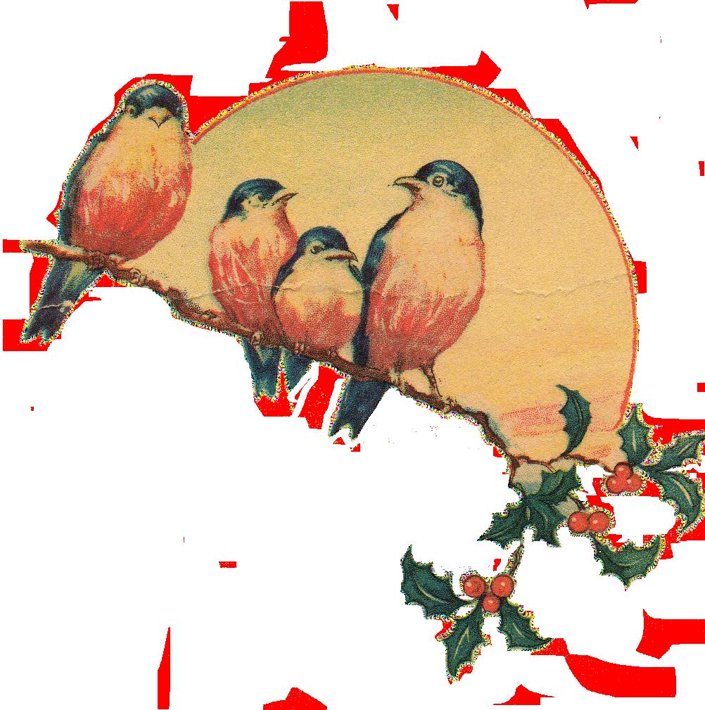 download vintage clipart hq png image freepngimg chameleon clipart transparent chameleon clip art coloring page