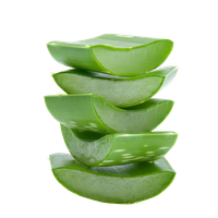 Aloe File PNG Image