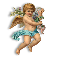 Download Angel Free Png Photo Images And Clipart Freepngimg Polish your personal project or design with these angel transparent png images, make it even more personalized and more attractive. download angel free png photo images