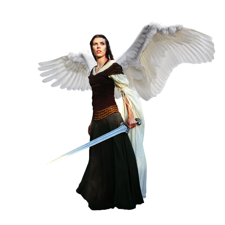 Angel Warrior Png PNG Image