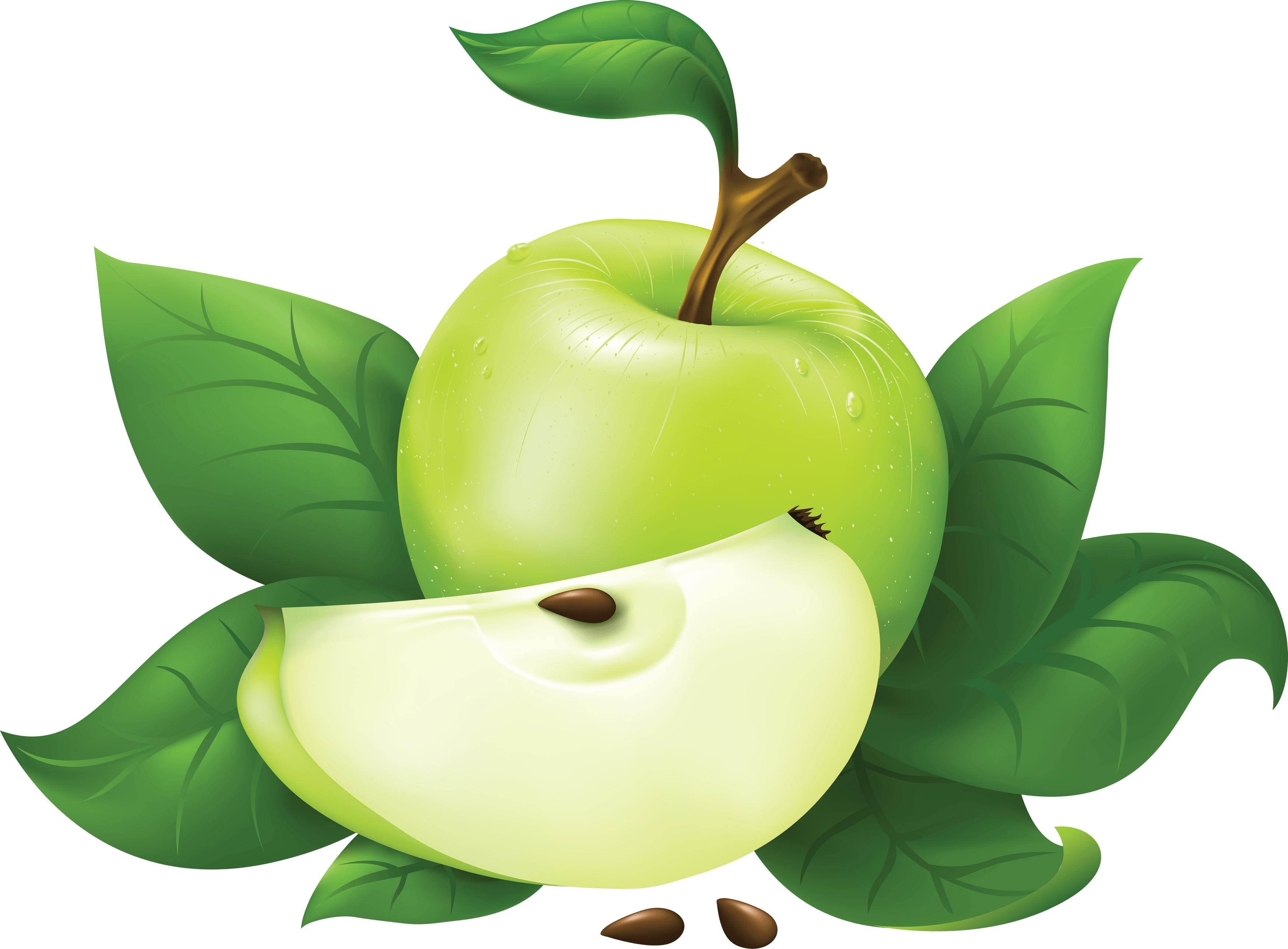 Green Apple Png Image PNG Image
