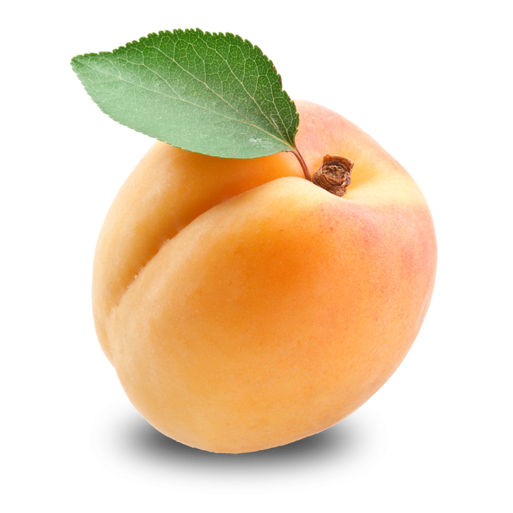 Apricot Free Download Png PNG Image