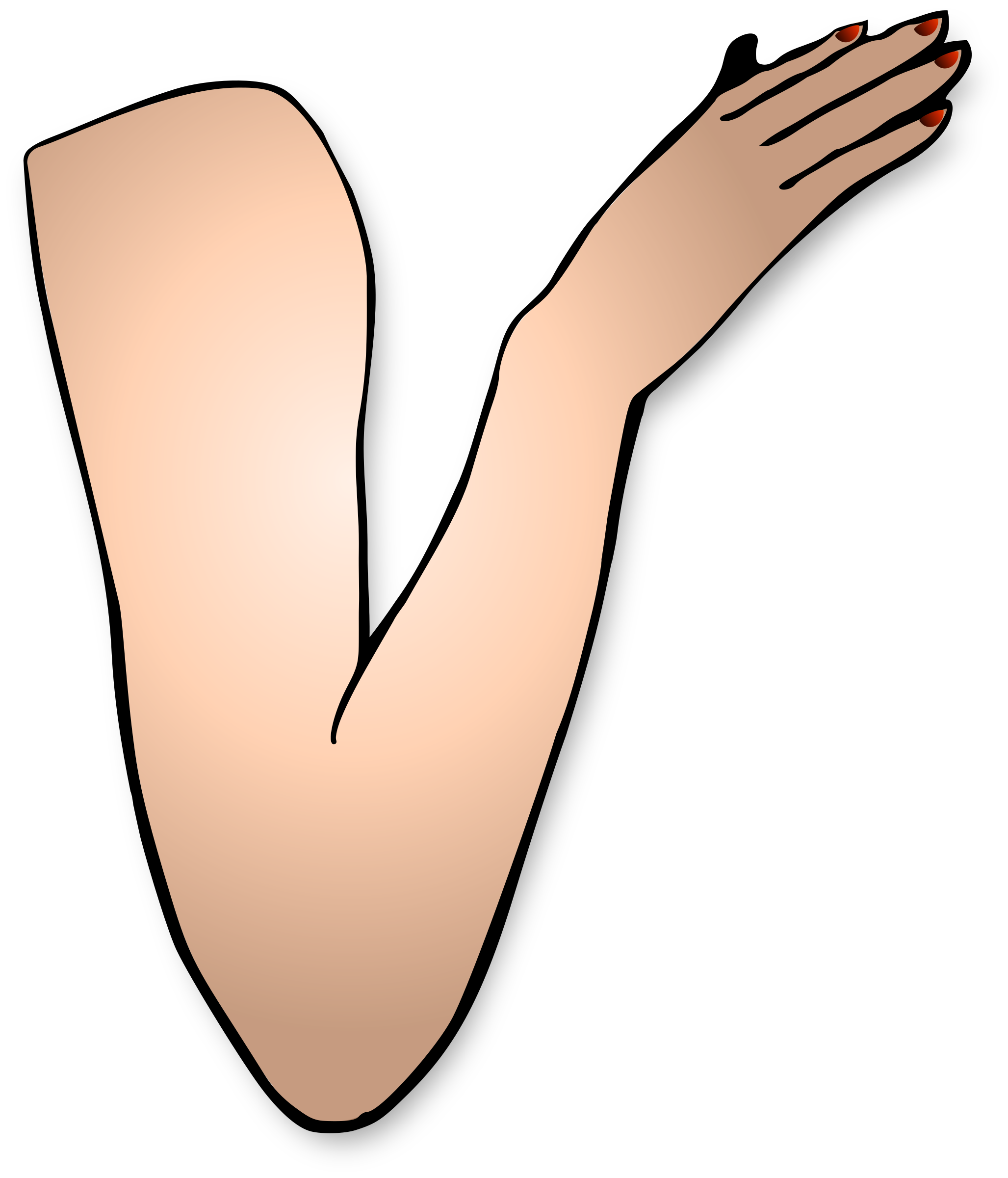 Arm Image PNG Image