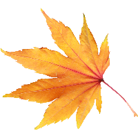 ОСЕННИЙ КЛИПАРТ 35-autumn-png-leaf-thumb