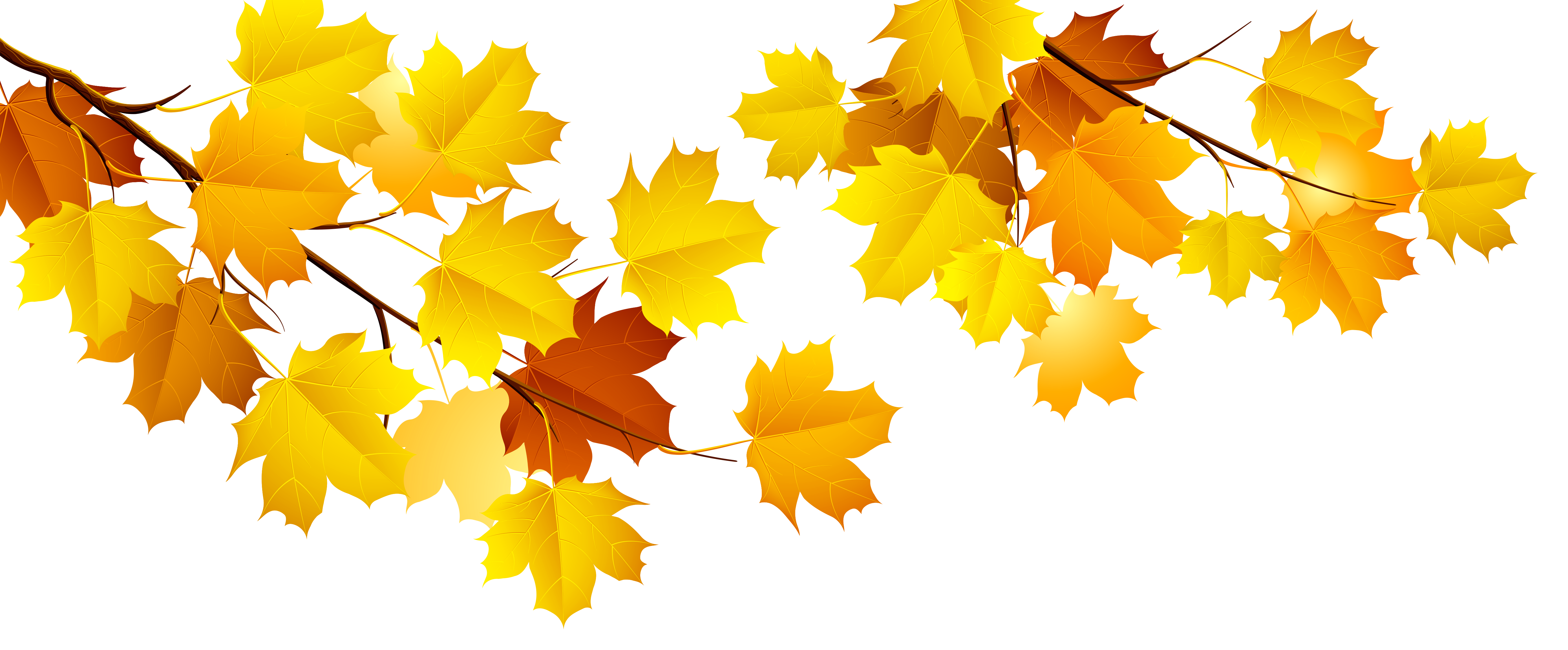 Download Autumn Png Image HQ PNG Image | FreePNGImg