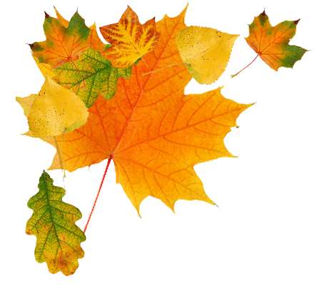 Autumn Png Clipart PNG Image