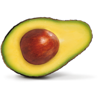 Avocado Picture PNG Image