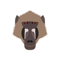 Baboon Png Image PNG Image